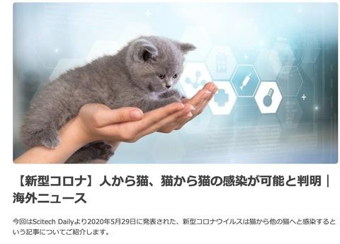 スクリーンショット 2020-06-14 9.52.15.jpg