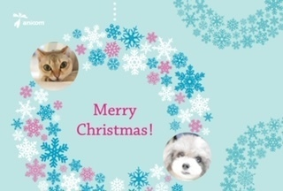 greeting_card.JPG